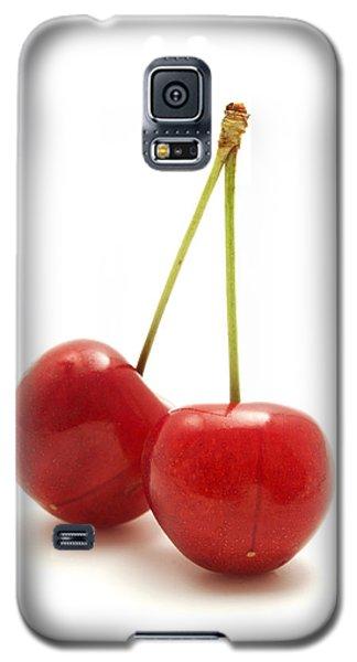 Wild Cherry Galaxy S5 Case