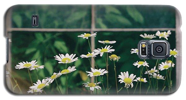 Wild Daisies Galaxy S5 Case