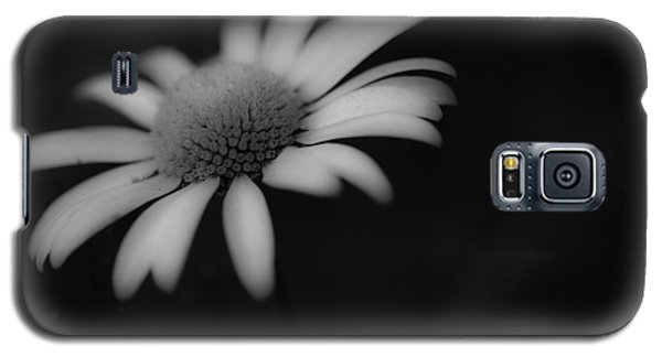 Wild Daisy Galaxy S5 Case