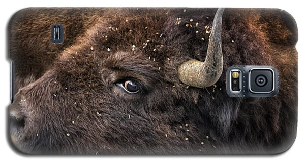 Wild Eye - Bison - Yellowstone Galaxy S5 Case