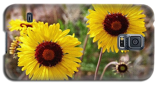 Galaxy S5 Case featuring the photograph Wild Flowers Above The Rim by Tom Janca