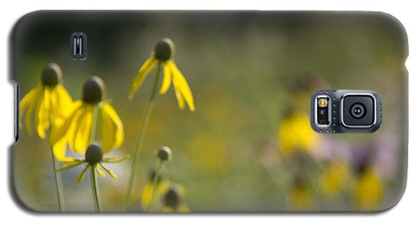 Wild Flowers Galaxy S5 Case by Daniel Sheldon