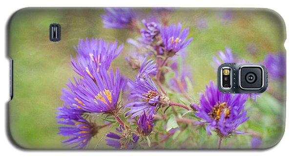 Wild Flowers In The Fall Galaxy S5 Case