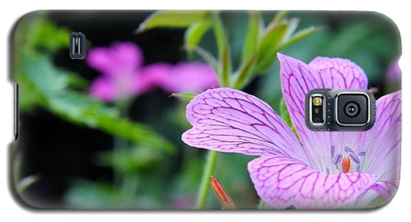 Galaxy S5 Case featuring the photograph Wild Geranium Flowers by Clare Bevan