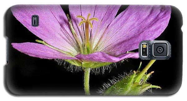 Wild Geranium Galaxy S5 Case by Tammy Schneider