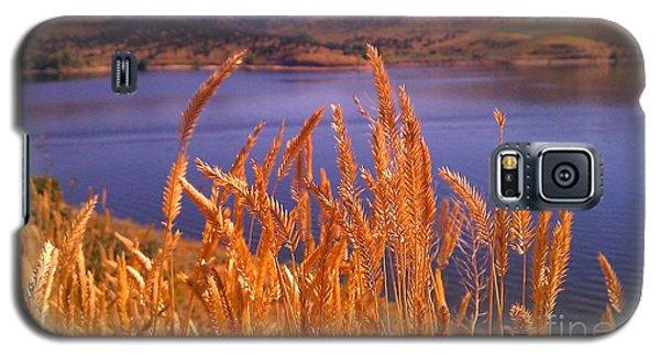 Wild Grain Galaxy S5 Case by Chris Tarpening