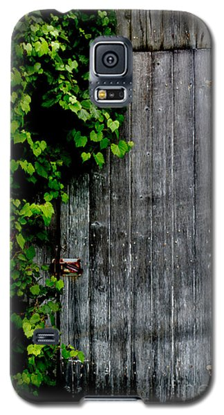 Wild Grape Vine Door Galaxy S5 Case