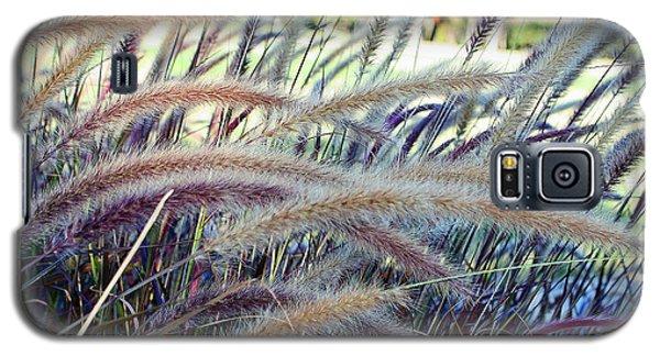 Wild Grasses In Autumn Galaxy S5 Case by Ellen Tully