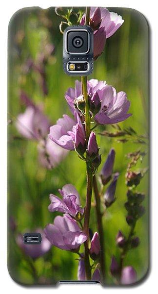 Wild Hollyhock Galaxy S5 Case