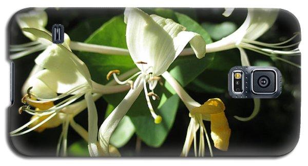 Wild Honeysuckle Galaxy S5 Case by Martin Howard