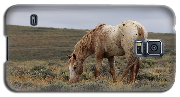 Wild Horse Galaxy S5 Case by Christy Pooschke