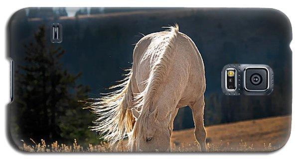 Wild Horse Cloud Galaxy S5 Case