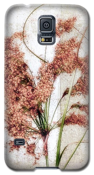 Wild Indian Rice In Autumn #2 Galaxy S5 Case by Louise Kumpf