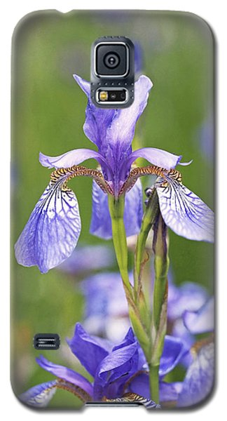 Wild Irises Galaxy S5 Case