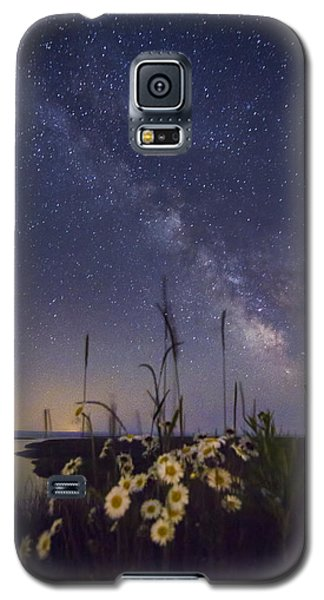 Wild Marguerites Under The Milky Way Galaxy S5 Case by Mircea Costina Photography