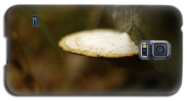 Galaxy S5 Case featuring the photograph Wild Mushroom by Alex King