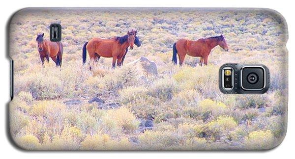 Wild Mustangs Galaxy S5 Case