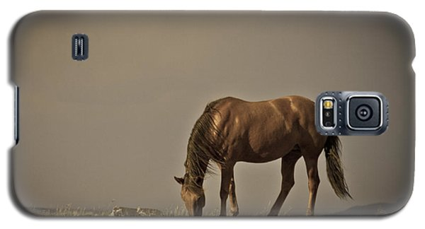 Wild Mustangs Of New Mexico 20 Galaxy S5 Case