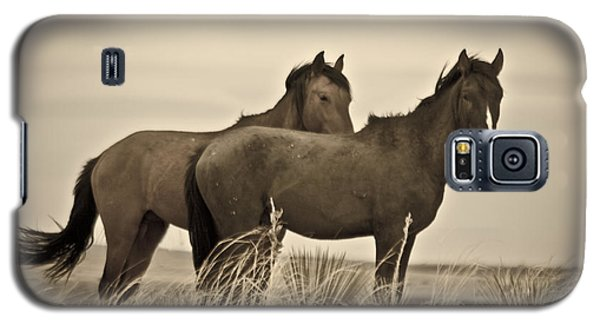 Wild Mustangs Of New Mexico 3 Galaxy S5 Case