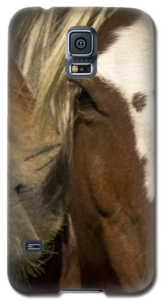 Wild Mustangs Of New Mexico 32 Galaxy S5 Case