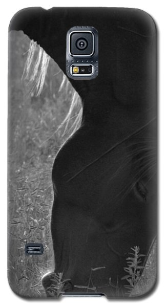 Wild Mustangs Of New Mexico 33 Galaxy S5 Case