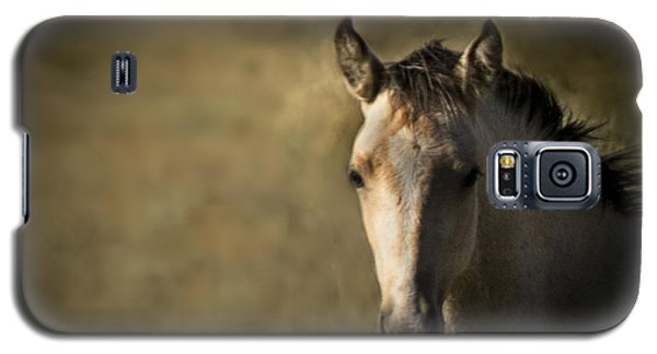 Wild Mustangs Of New Mexico 35 Galaxy S5 Case