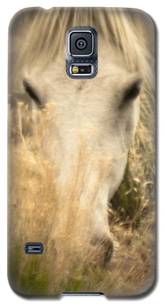 Wild Mustangs Of New Mexico 36 Galaxy S5 Case
