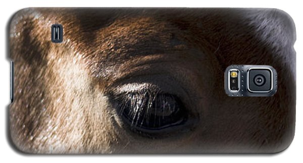 Wild Mustangs Of New Mexico 41  Galaxy S5 Case