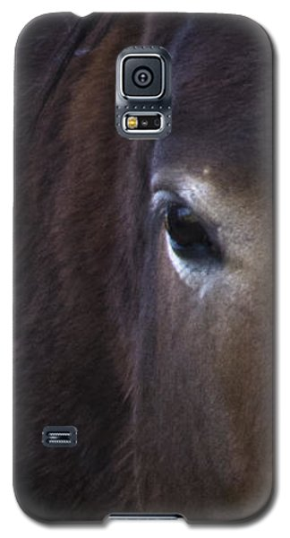 Wild Mustangs Of New Mexico 42 Galaxy S5 Case