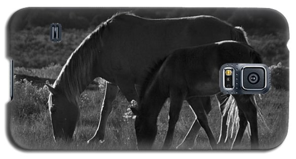 Wild Mustangs Of New Mexico 7 Galaxy S5 Case