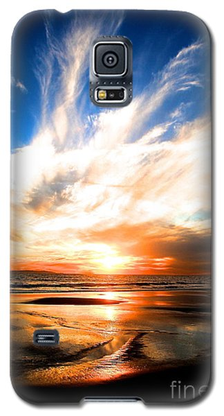 Wild Night Sky Galaxy S5 Case by Margie Amberge
