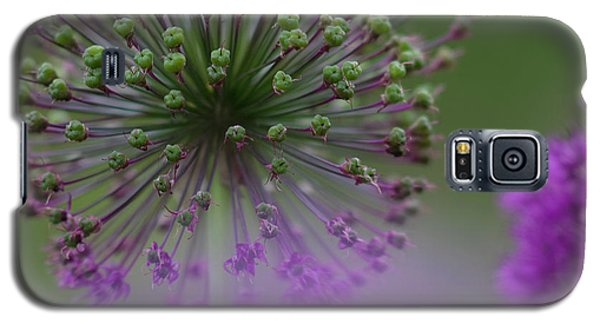 Wild Onion Galaxy S5 Case by Heiko Koehrer-Wagner