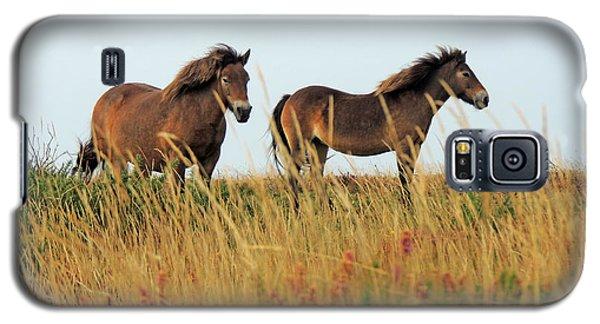 Wild Ponies On Exmoor Galaxy S5 Case