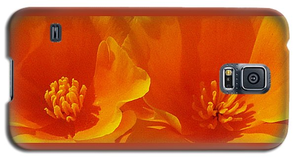 Wild Poppies Galaxy S5 Case