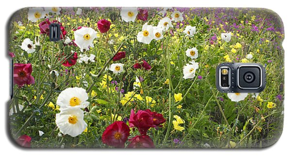 Wild Poppies South Texas Galaxy S5 Case by Susan Rovira