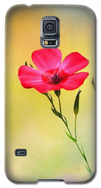 Galaxy S5 Case featuring the photograph Wild Red Flower by Tom Janca
