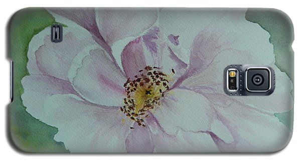 Wild Rose Galaxy S5 Case by Betty-Anne McDonald