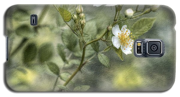 Galaxy S5 Case featuring the photograph Wild Rose by Kathleen Holley