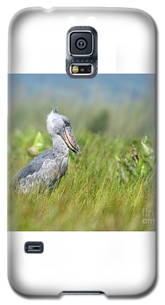 Galaxy S5 Case featuring the photograph Wild Shoebill Balaeniceps Rex  by Liz Leyden