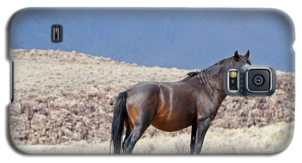 Wild Stallion In The Mountains Galaxy S5 Case
