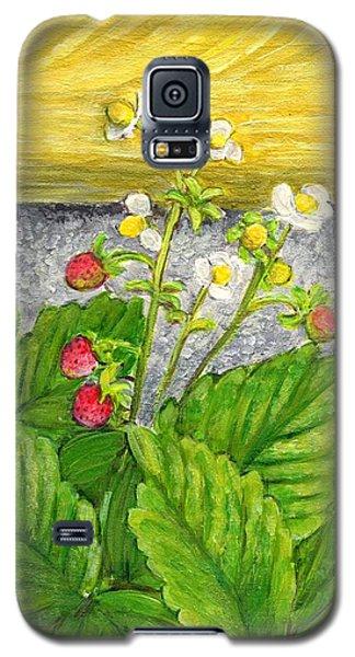 Wild Strawberries In Summer Galaxy S5 Case by Jingfen Hwu