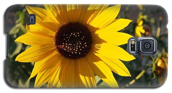 Wild Sunflower Galaxy S5 Case