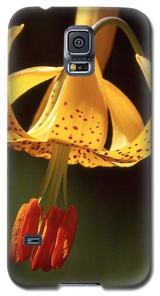 Wild Tiger Lily Galaxy S5 Case