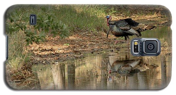 Wild Turkey Crossing Galaxy S5 Case