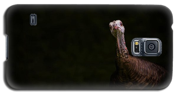 Wild Turkey Portrait Galaxy S5 Case