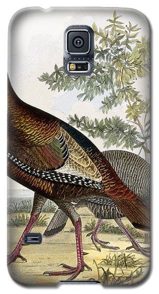 Wild Turkey Galaxy S5 Case by Titian Ramsey Peale