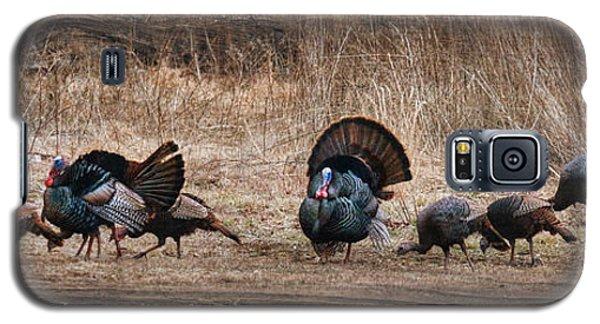 Wild Turkeys Galaxy S5 Case