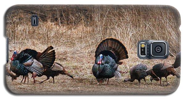 Wild Turkeys Galaxy S5 Case by Lori Deiter