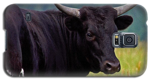 Galaxy S5 Case featuring the painting Wild Type Colored Heifer Longhorn Cow by Karon Melillo DeVega
