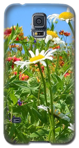 Galaxy S5 Case featuring the photograph Wild White Daisies #2 by Robert ONeil